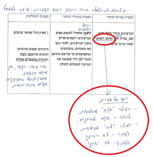 """דו""""ח מעבדה בכימיה עם הערות המורה לתיקון העברית"""