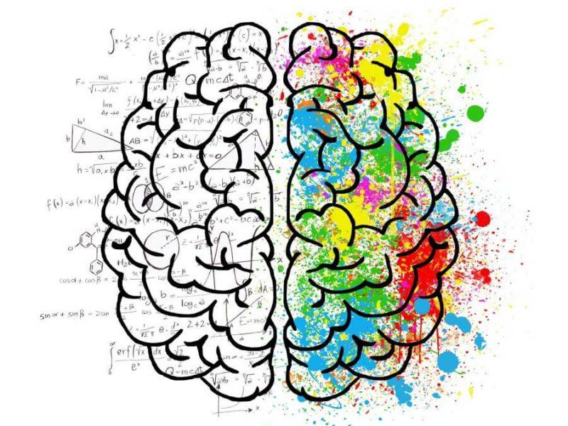כתיבה ועריכה: טכניקה או יצירתיות?